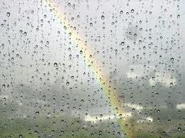 der Regenbogen, die Regenbögen