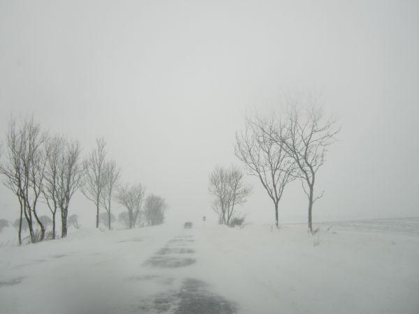 Wintertag auf dem Land (Foto: klw)