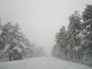 verschneite Landstrasse im Winterwald (Foto: klw)