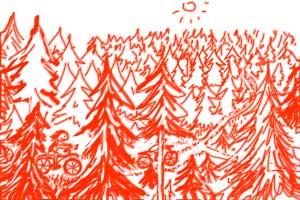Wir fahren im Wald - Dativ