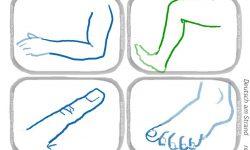 Der Körper · Memorykarten in Genusfarbe · Hand, Fuss, Arm, Bein, Finger, Zeh, Bauch, Po · reflejarte.es/DeutschamStrand